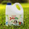 Nước rửa bát Safelife